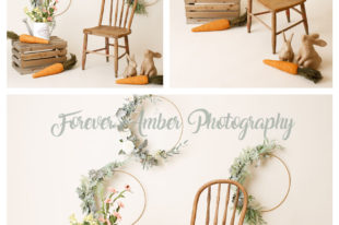 spring mini session with wooden chair, crate, wooden bunnies, carrots, neutral color backdrop