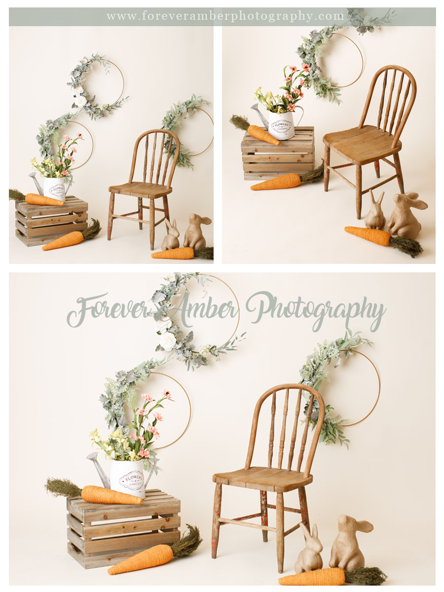 <alt>spring mini session with wooden chair, crate, wooden bunnies, carrots, neutral color backdrop<alt>